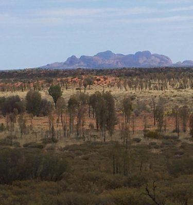 Photo Prints Australian Outback Outback Jacaranda Haze