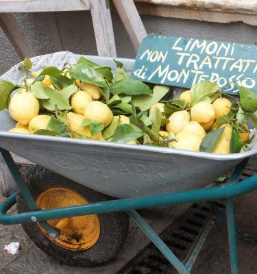 Photo Prints Food Limoni Carriola
