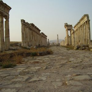 Photo Prints Syria Apamea Collonade